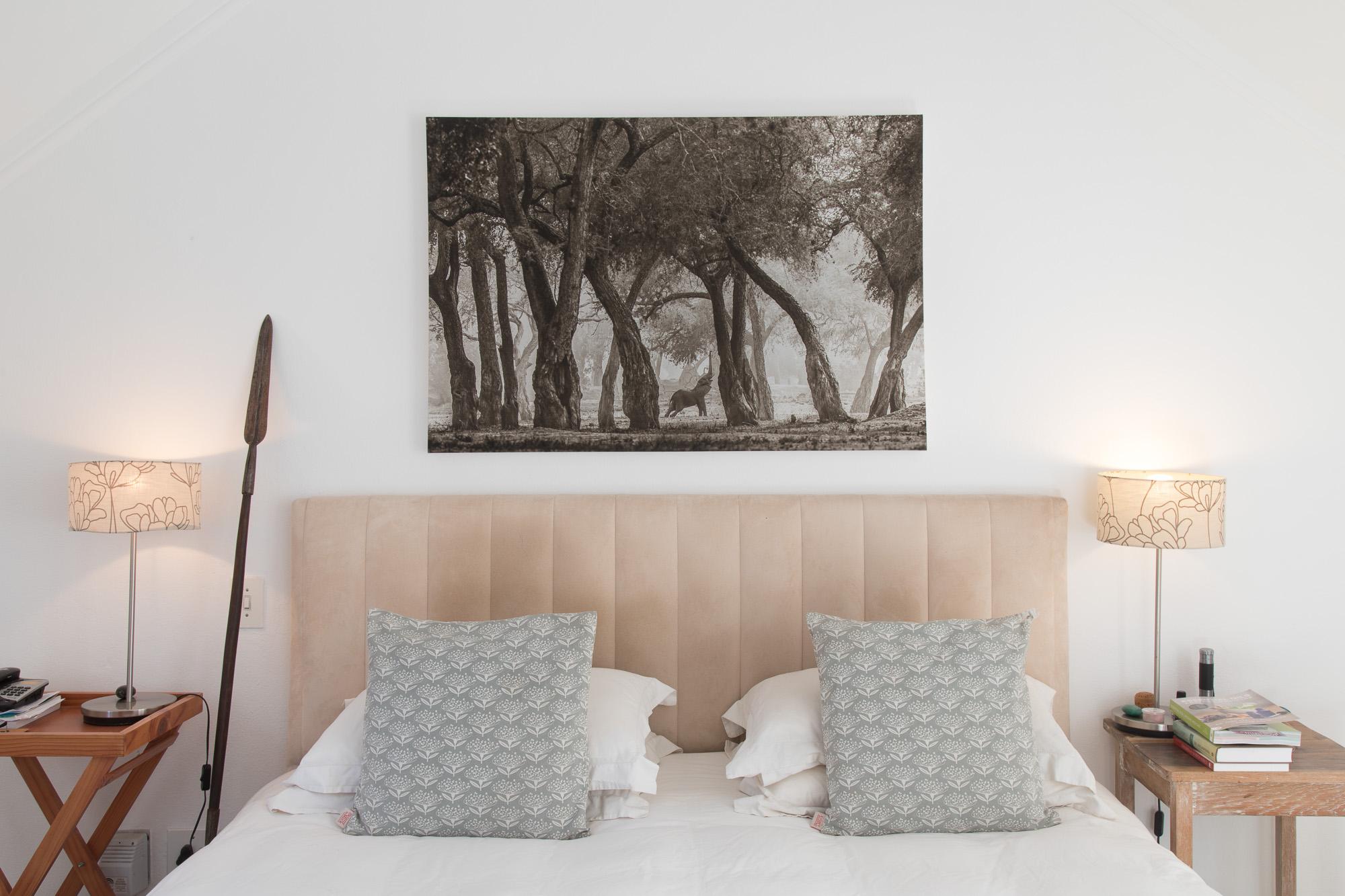 Mana Pools Elephant - Canvas Print on Wooden Block Mount