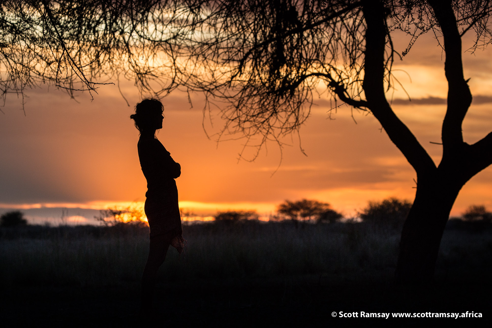 Joni at sunset on our last evening in Central Kalahari, with her friend the camelthorn tree. Near Leopard Pan.
