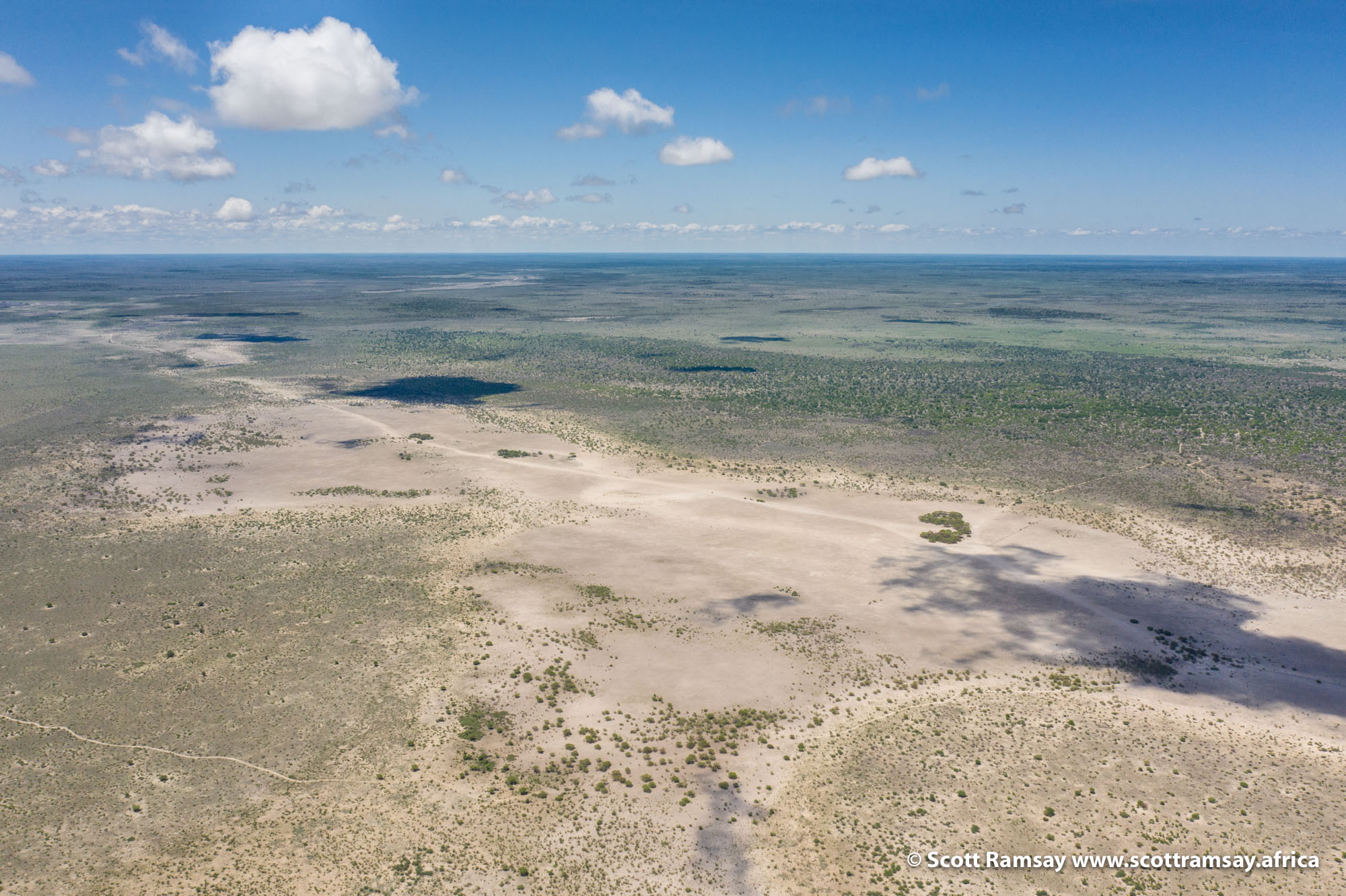 Two examples of how rainfall changes everything here in the Central Kalahari. This photo is of Deception Pan, in the east of the Reserve. Little rain had fallen this particular summer, and the conditions resembled a dry winter period....
