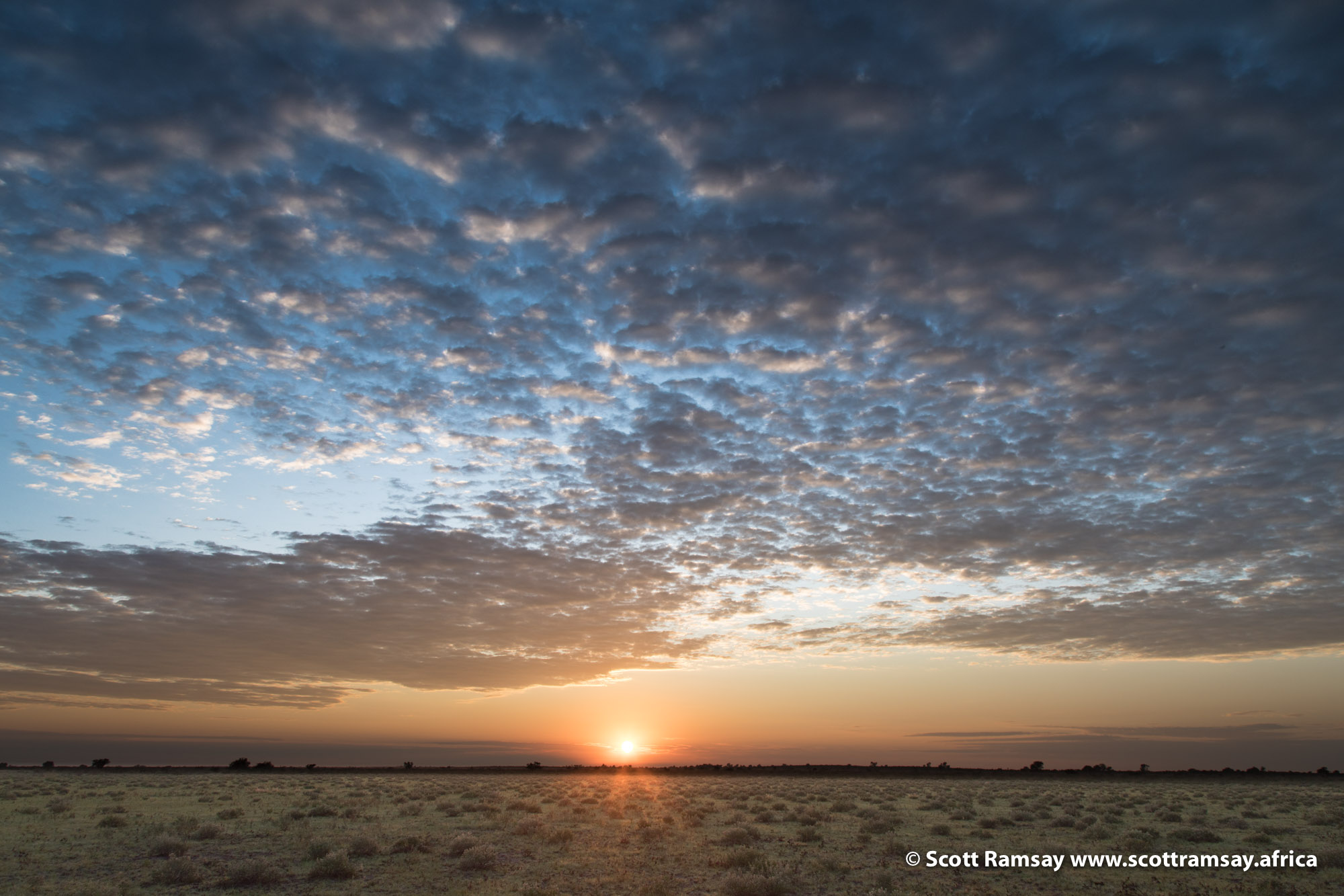Dawn in the Kalahari...just looking at this photo now makes me wanna go back!